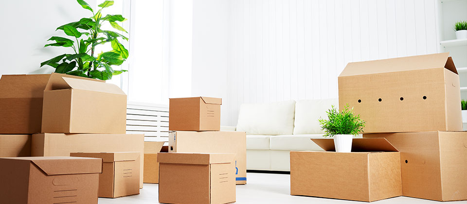 Quality Packing & Moving in Bangalore